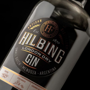 Read more about the article Gin London Dry